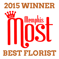 2015 Memphis Most Winner