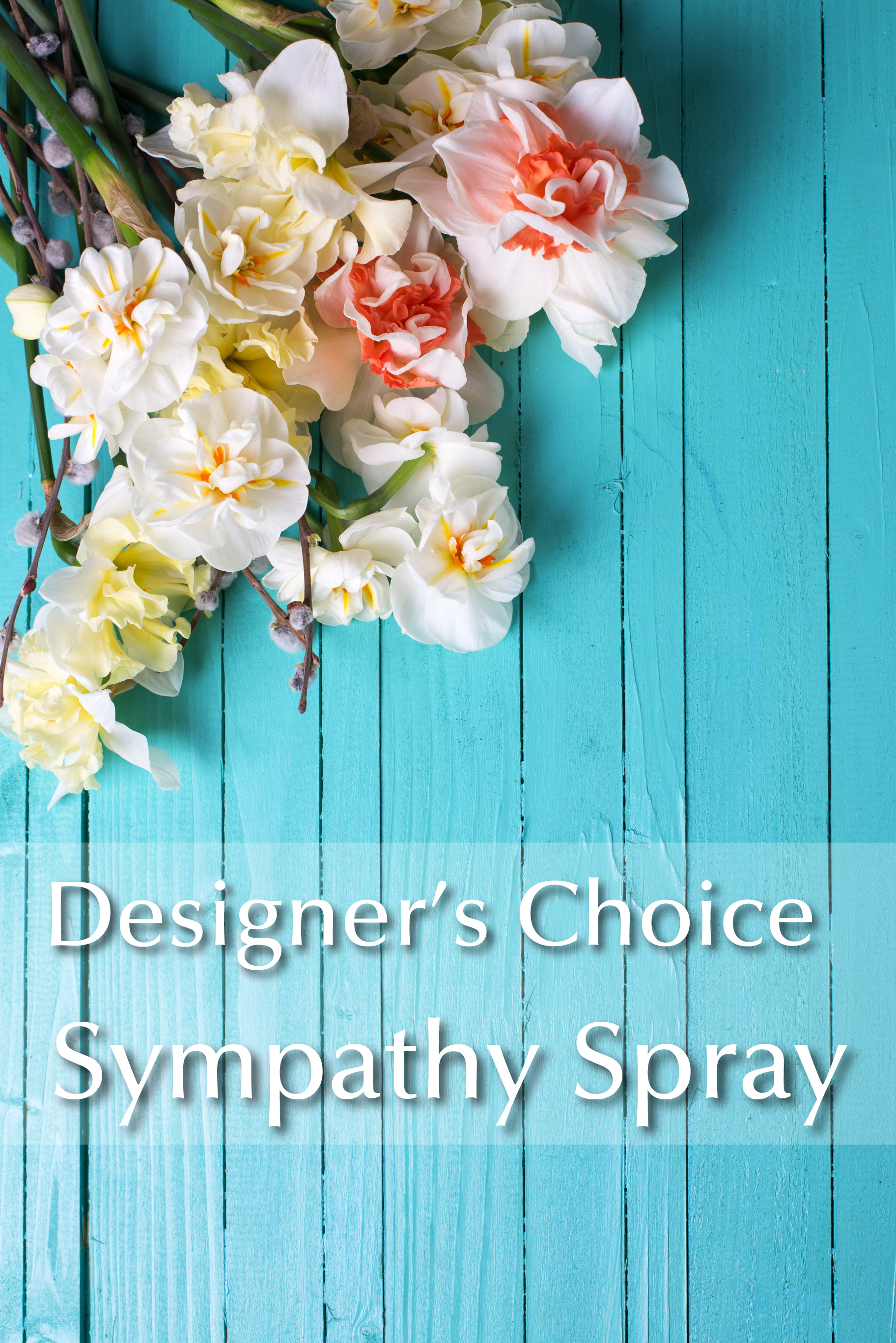 dc-sympathy-spray